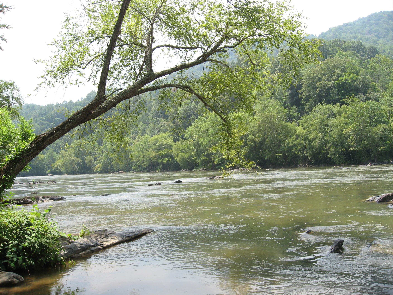 Asheville NC Mountain Homes