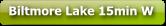 Biltmore Lake Asheville NC homes for sale