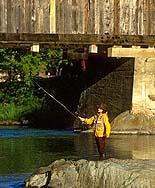 Warren, VT Fishing