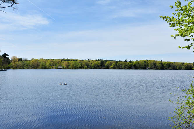 New Listing New Construction with view of Morses Pond in Wellesley