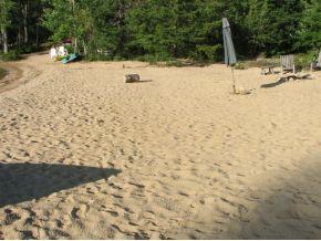 Ossipee Lake Real Estate -Ossipee Lake Real Estate for sale - 153 feet of beach