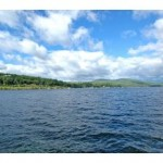 Lake Winnipesaukee Real Estate for Sale - alton NH