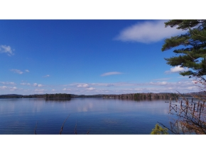 lake winnipesakee land for sale