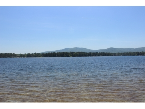 Blog Lady Of The Lake Realty