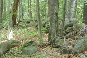 Rock Walls and trails soon to be open for Hiking