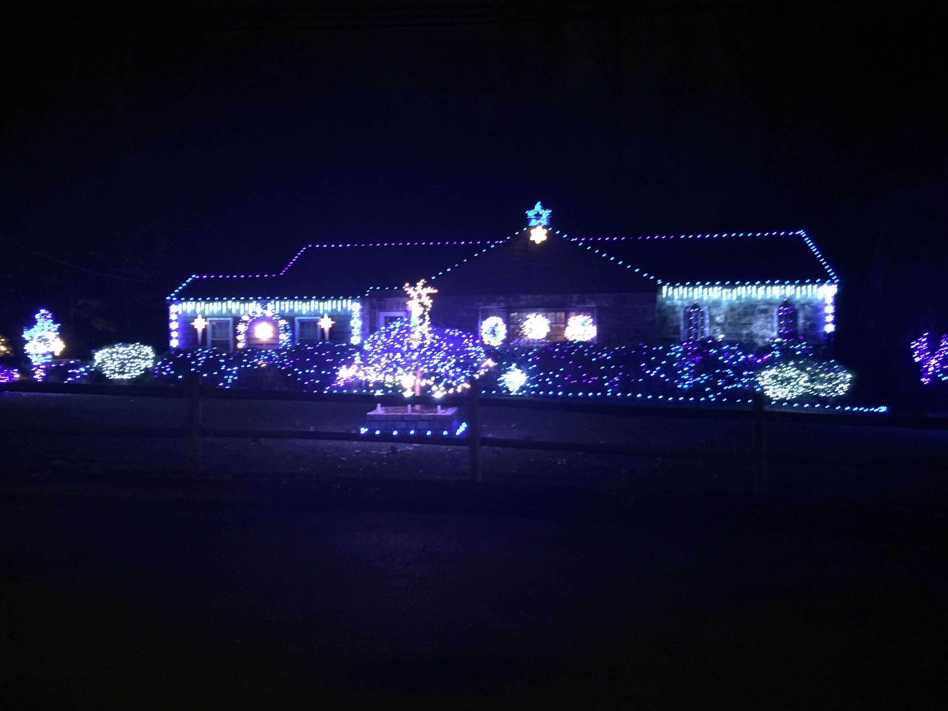 xmas lights3
