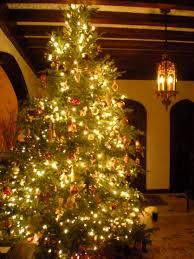 xmas tree-white lights