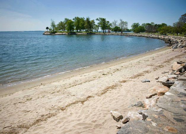 Cove Island one