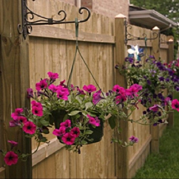 hanging-baskets-2-pinterest