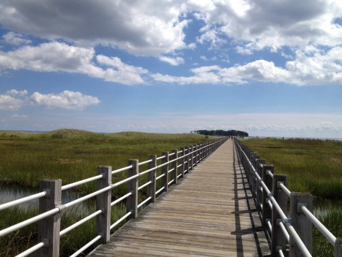 3. Silver Sands State Park in Milford was once voted one of the best beaches in the New England Area. People love this spot for its beauty and lack of heavy traffic.