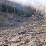 GSMNP Landslide Upslope View