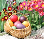 t200-0320 - easter egg hunt basket