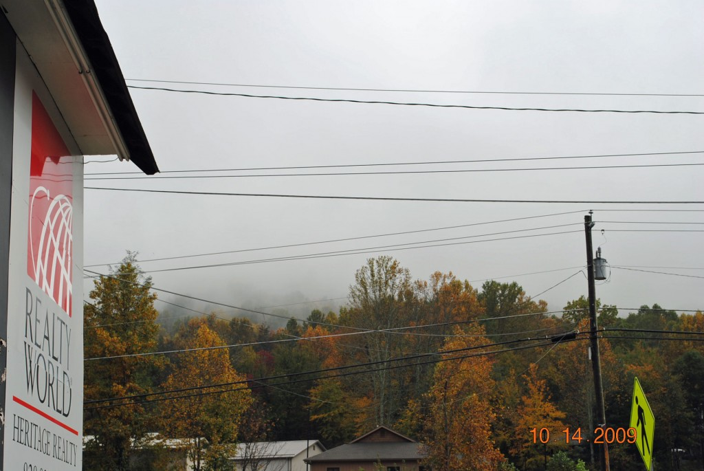 Maggie Valley NC Daily Leaves Color Update as of Oct. 14