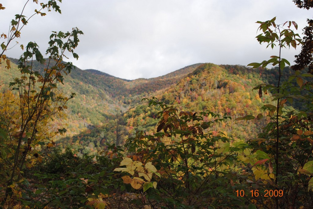 Maggie Valley NC Long Range Views & Creeks Pictures