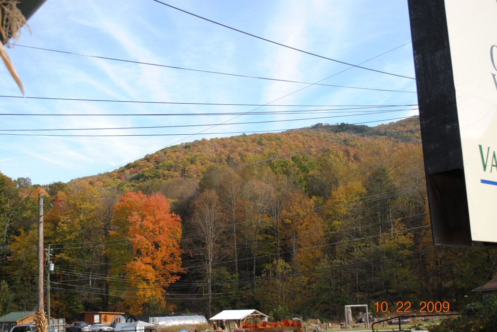 Maggie Valley NC Fall Leaves Update as of 10-22-09