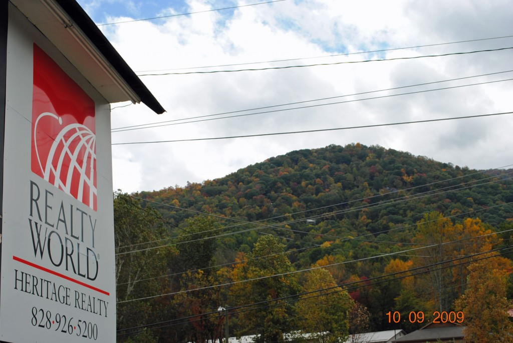 Maggie Valley NC Daily Leaves Update